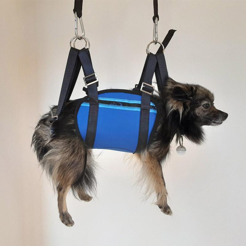 Harnais de parapente pour chien